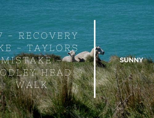 SUNNY #17 – RECOVERY HIKE – TAYLORS MISTAKE – GODLEY HEAD WALK